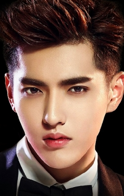 Actor, Writer, Producer, Composer Kris Wu - filmography and biography.