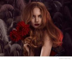 Lily Cole - best image in biography.