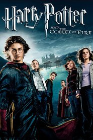 Harry Potter and the Goblet of Fire is the best movie in Rupert Grint filmography.