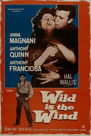 Wild Is the Wind movie in Anthony Quinn filmography.