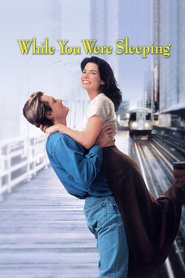 While You Were Sleeping movie in Sandra Bullock filmography.
