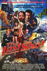 The Last Shot movie in Tim Blake Nelson filmography.