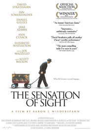 The Sensation of Sight movie in David Strathairn filmography.