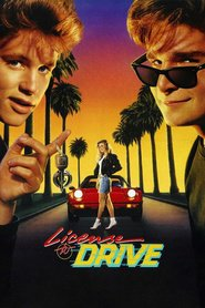 License to Drive movie in Corey Feldman filmography.