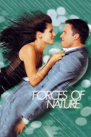 Forces of Nature movie in Sandra Bullock filmography.