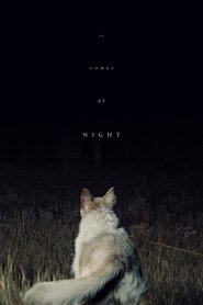 It Comes at Night is the best movie in Riley Keough filmography.