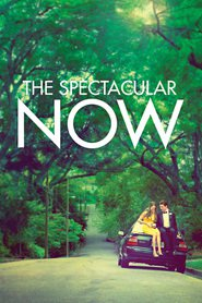 The Spectacular Now movie in Miles Teller filmography.