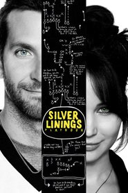 Silver Linings Playbook movie in John Ortiz filmography.