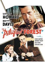 The Petrified Forest movie in Joe Sawyer filmography.