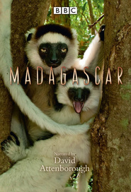 Madagascar is the best movie in John Brown filmography.