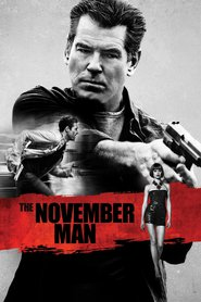 The November Man movie in Olga Kurylenko filmography.