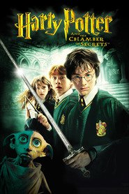 Harry Potter and the Chamber of Secrets is the best movie in Rupert Grint filmography.
