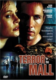 Terror in the Mall is the best movie in Danny Webb filmography.
