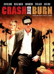 Crash and Burn movie in Michael Madsen filmography.