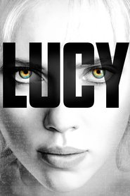 Lucy is the best movie in Choi Min Sik filmography.