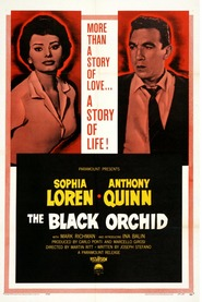 The Black Orchid movie in Anthony Quinn filmography.