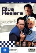 Blue Heelers  (serial 1994-2006) movie in Deklan Imis filmography.