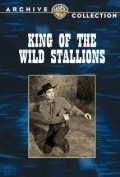 King of the Wild Stallions movie in Edgar Buchanan filmography.