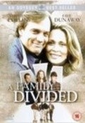 A Family Divided movie in Matt Hill filmography.