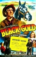 Black Gold movie in Anthony Quinn filmography.