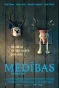 Medibas is the best movie in Andris Keiss filmography.