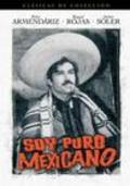 Soy puro mexicano movie in Antonio Bravo filmography.
