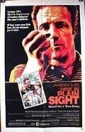 Hide in Plain Sight movie in James Caan filmography.
