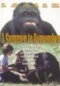 A Summer to Remember movie in Dennis Haysbert filmography.