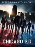 Chicago P.D. is the best movie in Sophia Bush filmography.