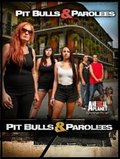 Pit Bulls and Parolees movie in Danny Trejo filmography.