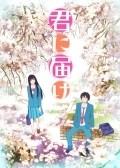 Kimi ni Todoke is the best movie in Mamiko Noto filmography.