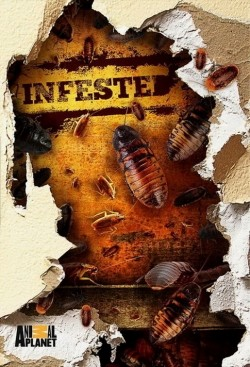 Infested! movie in Ben Mole filmography.