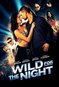 Wild for the Night is the best movie in Danielle Savre filmography.
