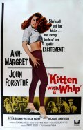 Kitten with a Whip is the best movie in Audrey Dalton filmography.