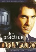 The Practice is the best movie in Michael Badalucco filmography.